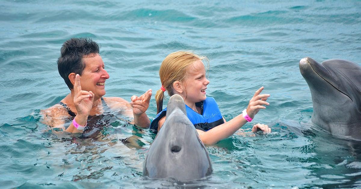 Actividades nado con delfines