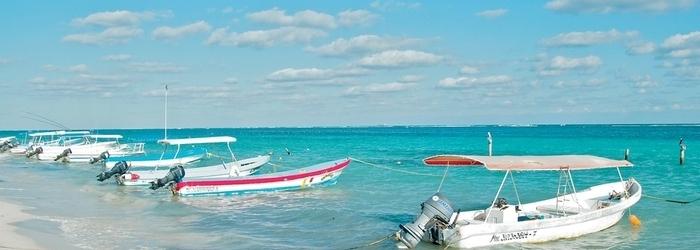 Puerto-Morelos-nado-con-delfines-cancun.png