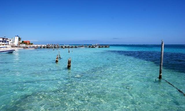 Puerto-morelos-playas-mas-hermosas-delphinus.png