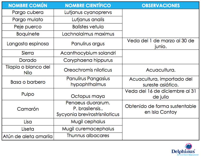 Consumo_responsable_de_pescados_y_mariscos 2-_Delphinus.png