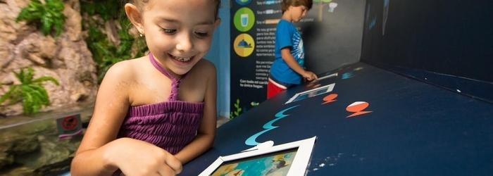 acuario-interactivo-nado-con-delfines-cancun.png