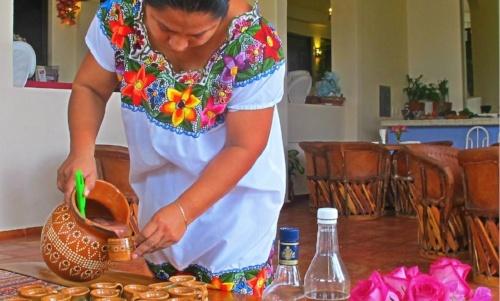 nado-con-delfines-en-puerto-morelos-aprende-a-cocinar
