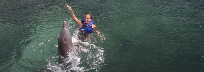 mejores-tipos-nado-con-delfines-cancun.png