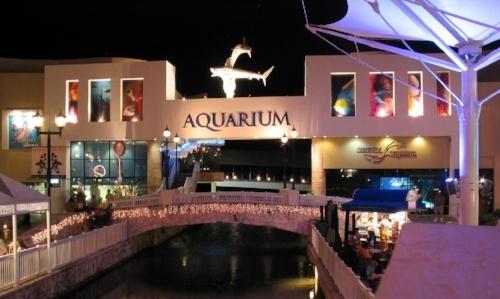 vivir-en-cancun-museo-interactivo-de-cancun