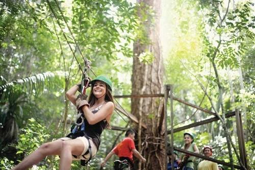 puerto-morelos-gorilax-jungle-park.jpg