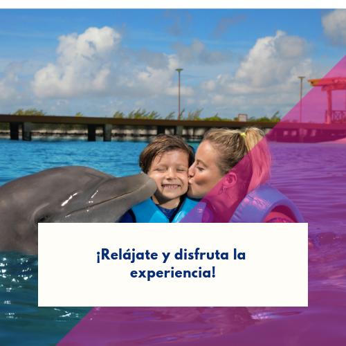 nadar-con-delfines-por-primera-vez (1)