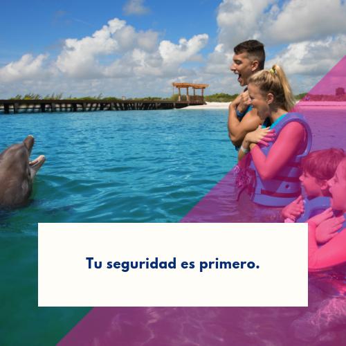 nadar-con-delfines-por-primera-vez (3)