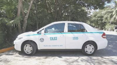 Delphinus Xel-Ha nado con delfines taxi