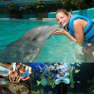 Delphinus Acuario Interactivo actividades con lluvia en Cancun
