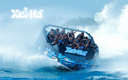 Delphinus actividad extra Xel-Ha adrenalina