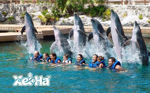 Delphinus actividad extra Xel-Ha nado con delfines