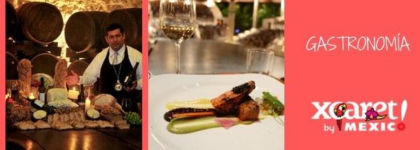 Delphinus Xcaret actividades extra gastronomía