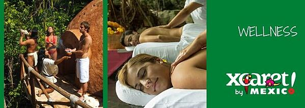 Delphinus Xcaret actividades extra wellness