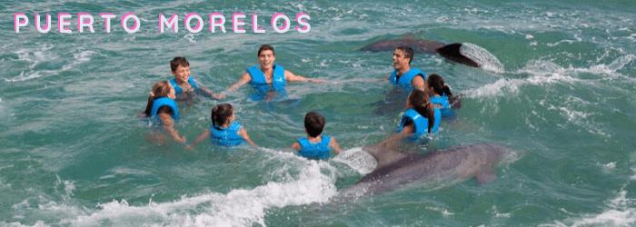 Delphinus mejores lugares nado con delfines Puerto Morelos
