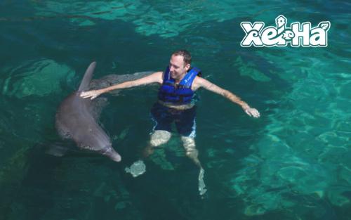 Delphinus-nado-con-delfines-Xel-ha-acuario-santuario