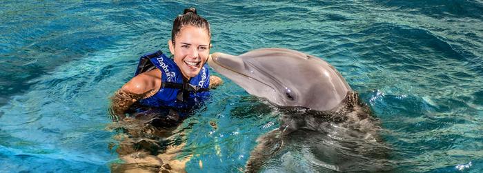 descuento-en-Nado-con-Delfines.png