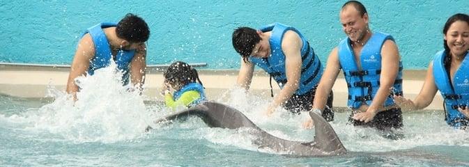 dia-mundial-del-agua-delphinus (2).png