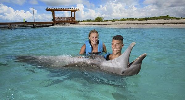 Nado con delfines riviera maya- Delphinus