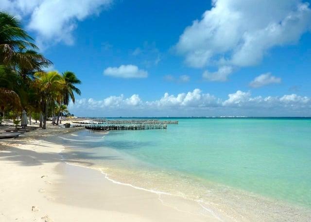 isla-mujeres-playas-mas-hermosas-delphinus.png