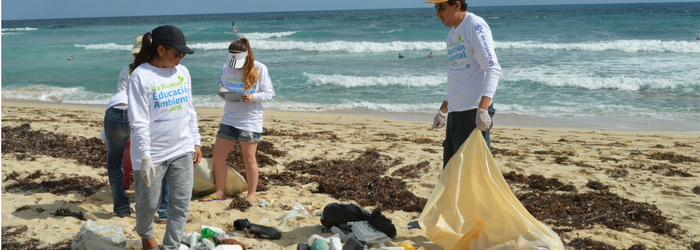 limpieza-de-playas-Delphinus.png