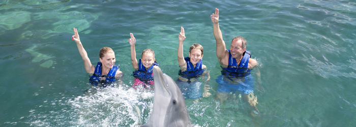 nado-con-delfines-en-cancun-para.familias.png