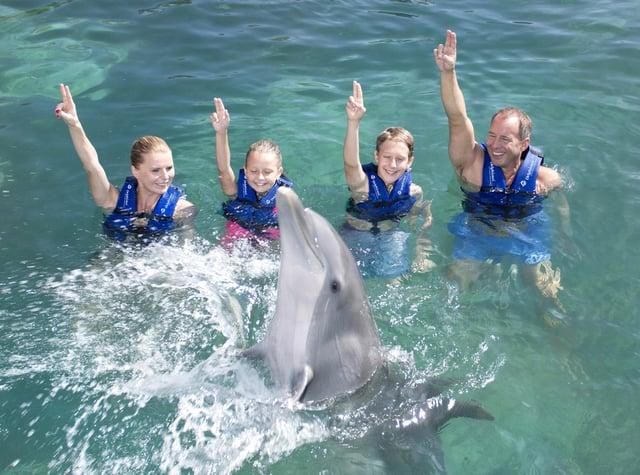 nado-con-delfines-paquete-xcaret-todo-incluido-familias.png