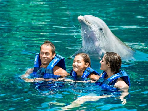 nado-con-delfines-xelha.png