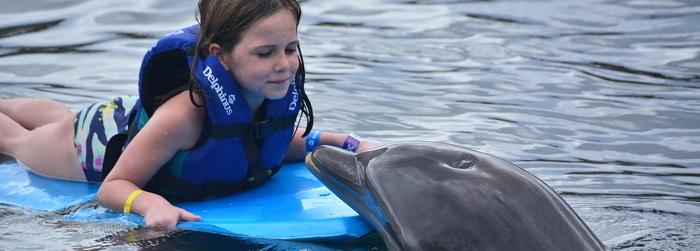nado_con_delfines_para_ninos_-_Delphinus.png
