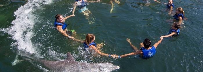 vacaiones_en_cancun_con_amigos_y_nado_con_delfines.png