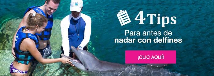 CTA_4tips-espanol