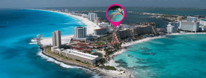 Delphinus nada con delfines en Cancun zona hotelera
