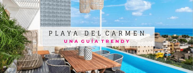 Delphinus Playa del Carmen guia trendy