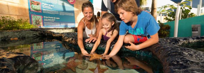 Delphinus-acuario-interactivo-nado-con-delfines