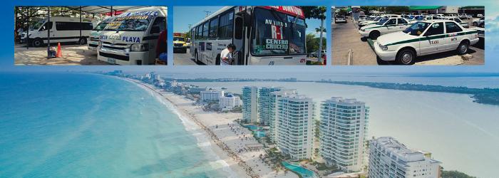 Delphinus consejos transporte publico en Cancun