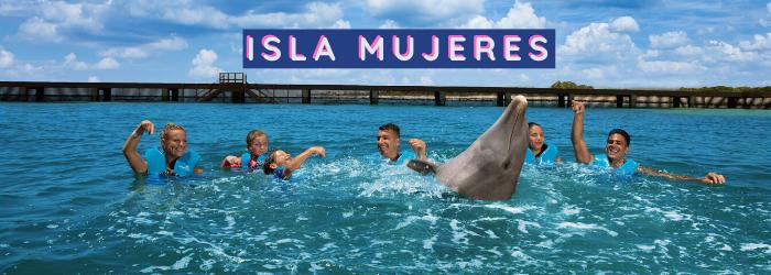 Nada con delfines si estás de vacaciones en Isla Mujeres